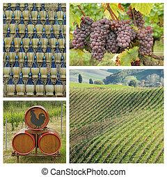 Chianti, bor, kollázs, toszkána,...
