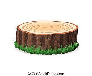 Cross section of tree stump, vector illustration, isolated...