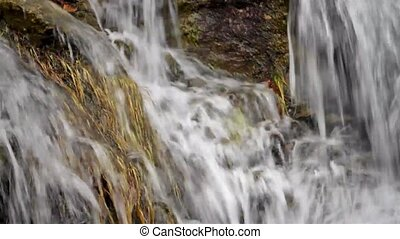 Water runoff on rocks and weeds - Video of a natural water...