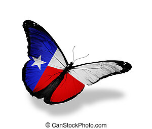 Texas  flag butterfly flying on sky background