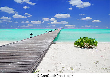 Jetty in the Maldives - Wooden jetty on over the beautiful...