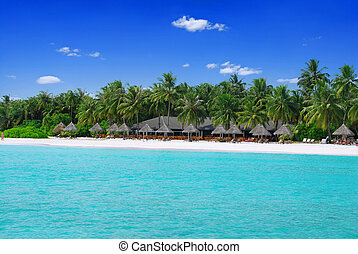 Tropical paradise in Maldives with white beach full of palms...
