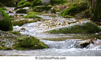 Brook Cascades in Fall Racking - Mediterranean River...