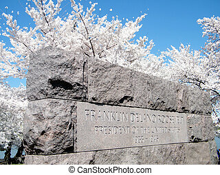 Washington Cherry Blossoms near Franklin Roosevelt Memorial...
