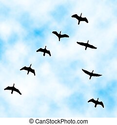 Cormorant flyover - Editable vector illustration of a...