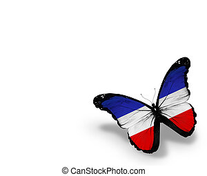 Schleswig-Holstein flag butterfly, isolated on white...