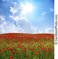 landscape - Red poppies on green field, sky and clouds