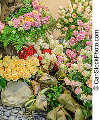 Ornamental rose flower garden