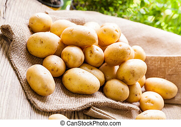 Farm fresh potatoes on a hessian sack - Farm fresh baby...