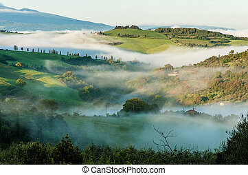 Typical Tuscan landscape in morning mist