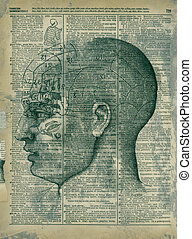Phrenology Head - Mixed medium collage phrenology head and...