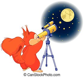 Squirrel astronomer - Illustration of very cute squirrel is...