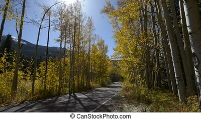 Road to Aspen Colorado Fall Colors - Paved road leading to...