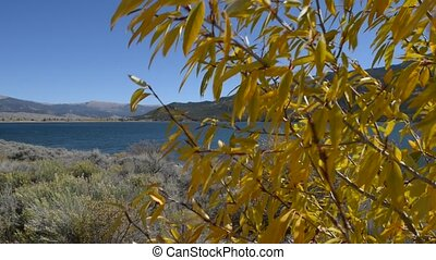 Fall Foliage with Twin Lakes in the - Twin Lakes - Lake...