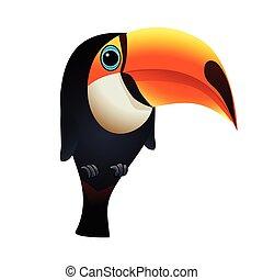 Illustration of toucan bird