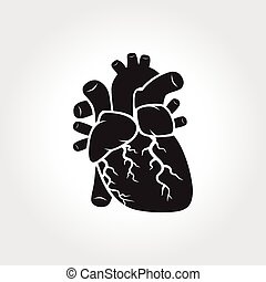 Heart anatomy symbol
