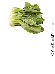 Chinese Cabbage Or Bok Choy - Chinese cabbage or bok choy...