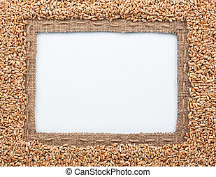 Frame of burlap and wheat beans, lying on a white background...