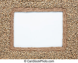 Frame of burlap and  rye  beans, lying on a white background
