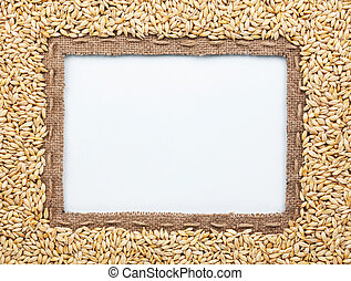 Frame of burlap and barley in beans, lying on a white...