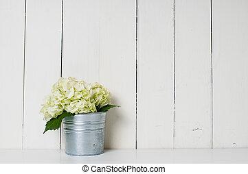 hydrangea flowers - White hydrangea flower in a tin pot on...