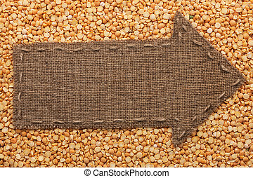 Pointer of burlap lies on dried peas, with place for your...