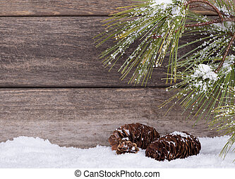Pine Tree Branch and Cones - Pine tree branch and cones with...
