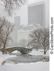 Snowfall on Central Parks Gapstow Bridge and the Pond - Snow...