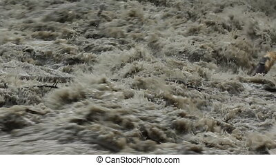 Flood river Turbulent water - Rough, turbulent water in...
