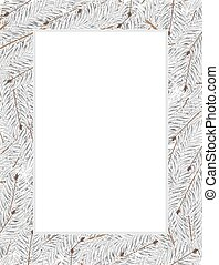 Snow covered fir tree branches on a white background....