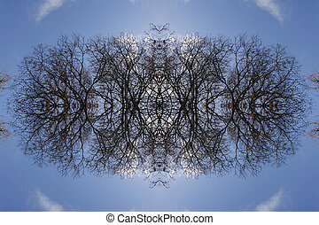 Mirror image tree in a blue sky