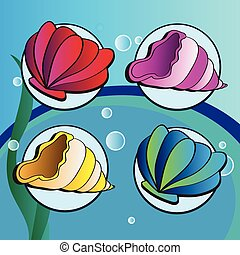sea shells - Set of four elements - sea shells on underwater...
