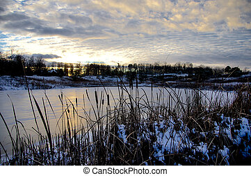 Ice Covered Lake - Bulrushes overlooking an ice covered lake...