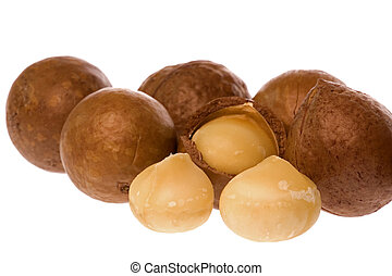 Macadamia Nuts - Isolated macro image of Macadamia nuts