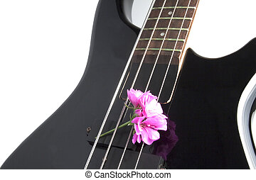Bass and flower - Closeup of a part of a bass guitar with a...
