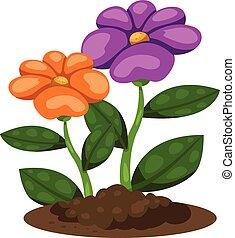 Illustrator of flower in the garden