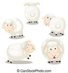 Illustrator of sheep funny cartoon