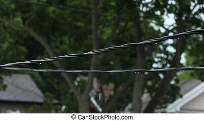 Suburban wires after the rain. - Residential electrical...