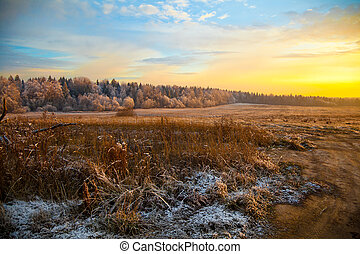 scenic autumn landscape at sunset, field, forest and dry...
