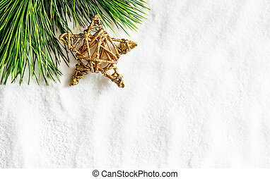 pine twig and christmas star on white snow