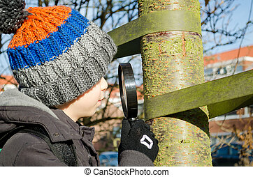 Little boy looks at a tree through a magnifying glass