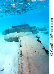Plain crash underwater - Underwater photo of a sunken drug...