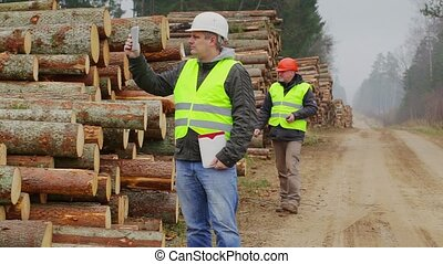 Forest Officers inspect piles of logs
