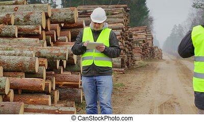 Forest Officers inspect piles of logs in forest