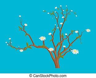 White Daisies Autumn Branches