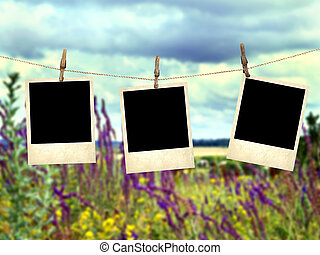 Old instant photos on the background of wild flowers