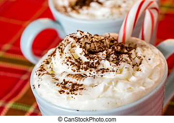 Hot chocolate garnished with whipped cream and cocoa powder.
