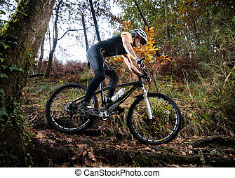 Cyclist on a mountain bike riding in the forest in autumn