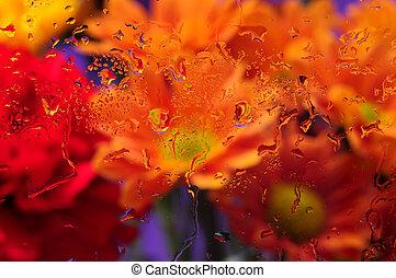 Rain drops on window glass flowers - Rain drops on window...