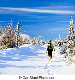 Winter hiking woman and dog
